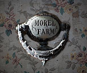Morel Farm